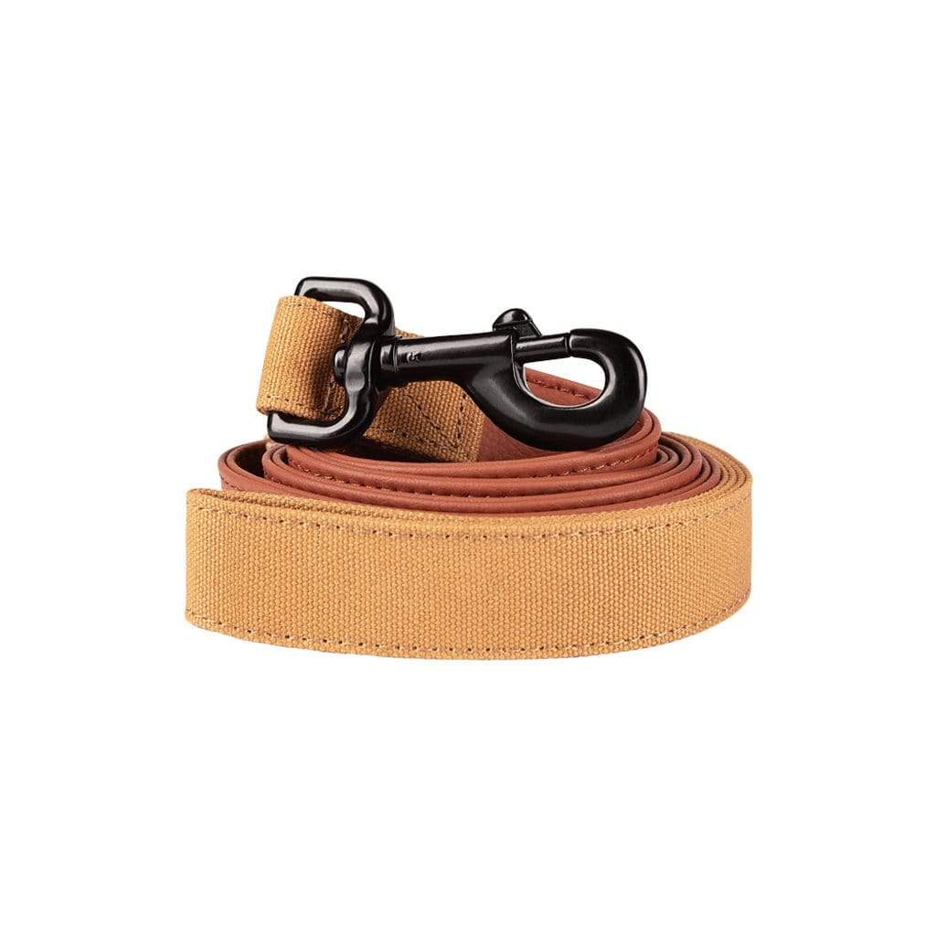 Herzog Leash Terracotta Leash