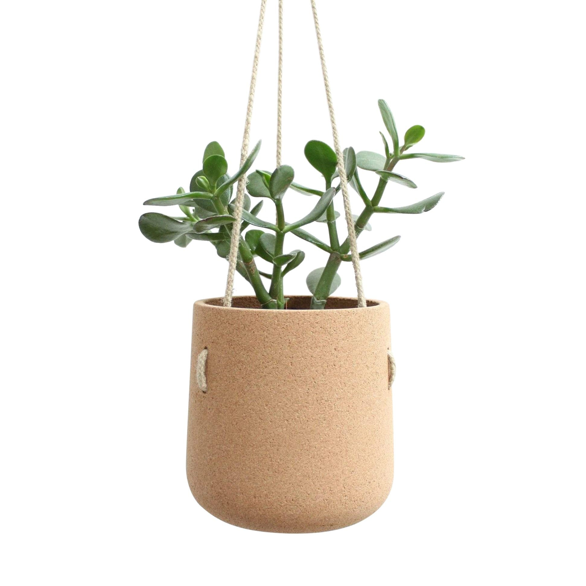 mind the cork Planters, Pots + Vases Off White (standard) Atlas Hanging Cork Planter