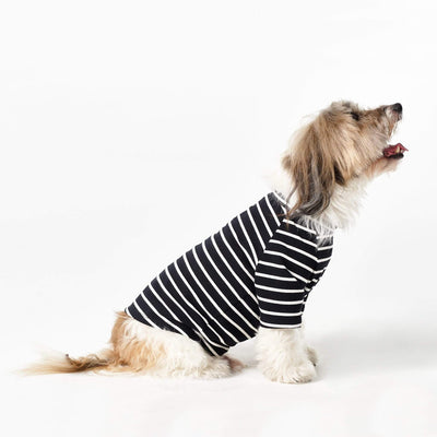 MISO & CO Sweaters, Shirts + Hoodies The Timeless Tee For Dogs