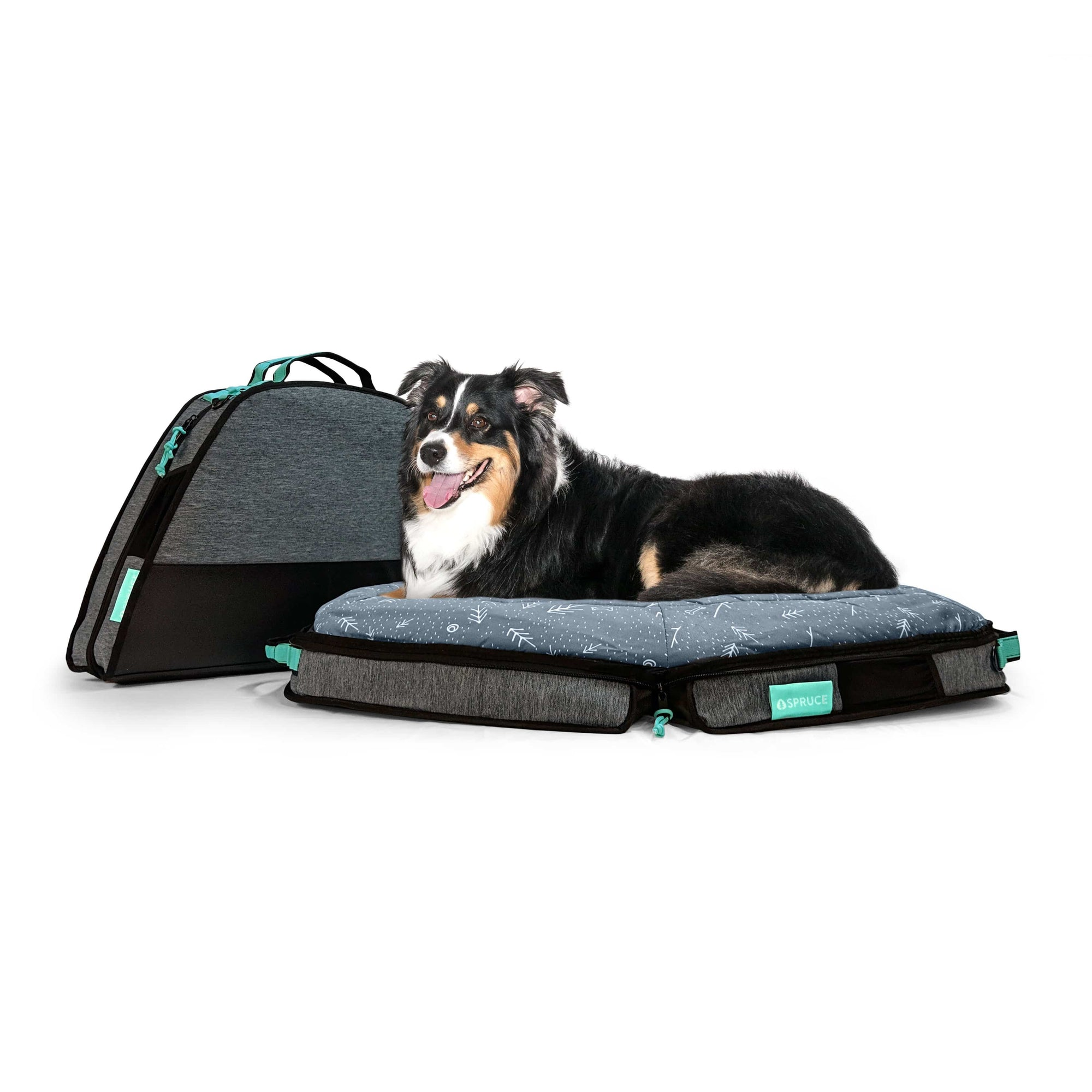 Spruce Pup Travel Beds + Mats Spruce Medium Travel Dog Bed