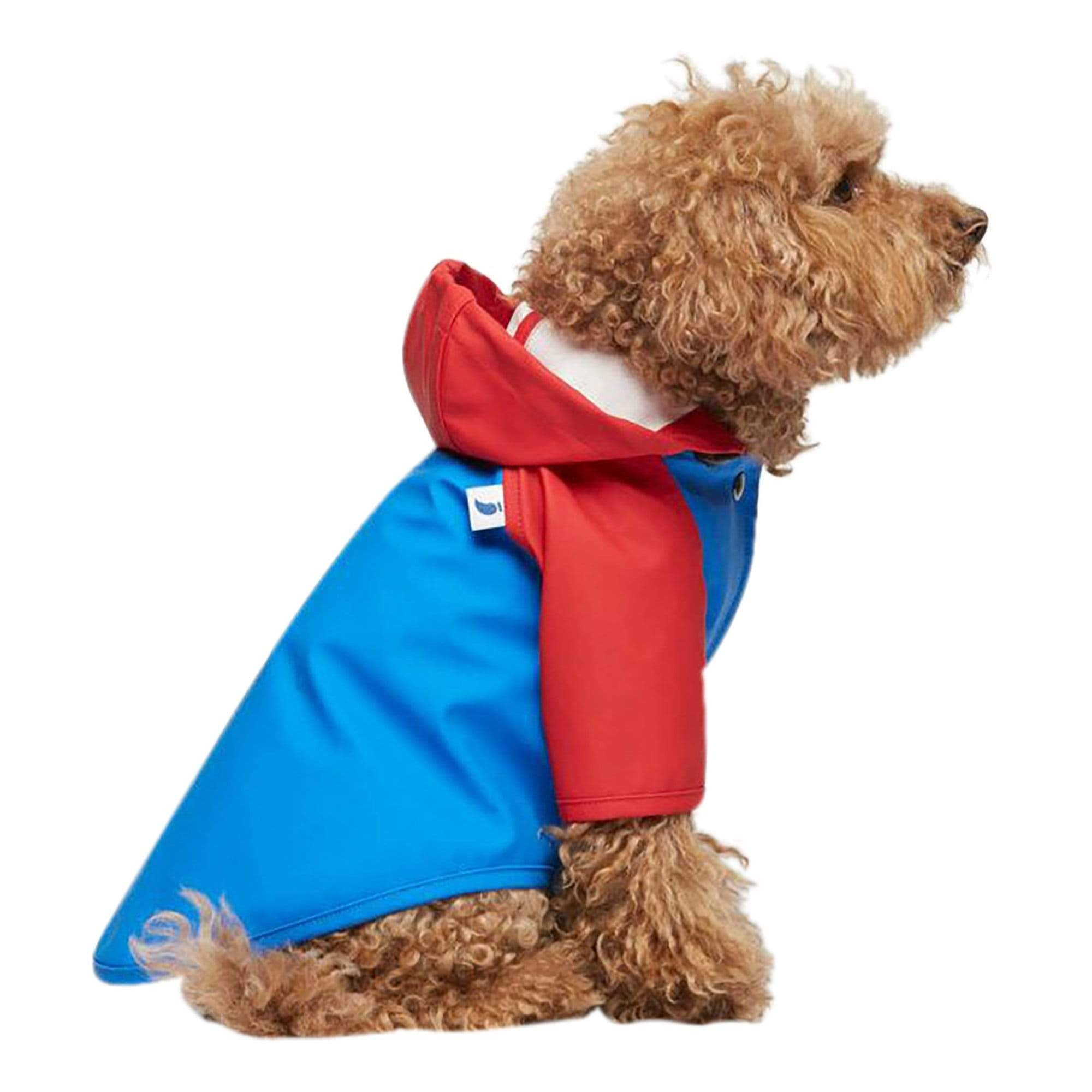 Sarah Style 04 Blue + Red Dog Raincoat