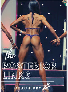 THE POSTERIOR LINKS EBOOK