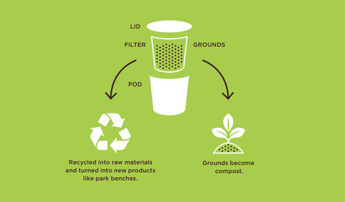 Don Francisco's Coffee Recycling Infographic