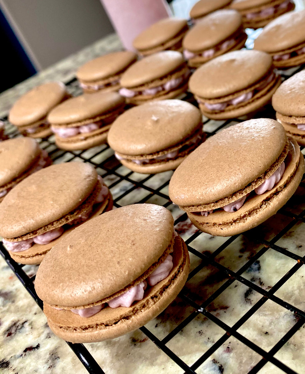 Chocolate Lemon Blueberry Macarons