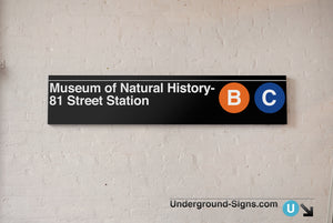 Museum of Natural History- 81 Street