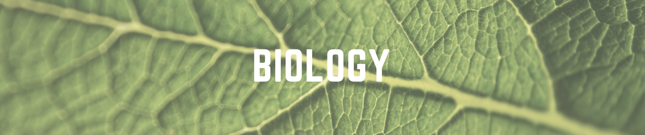 biology text with image background