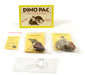 Rare Fossil Dino Pac - Dinosaur Egg, Bone, and Dung Fossils with Info Cards, Geologic Timescale, and 4X Magnifier