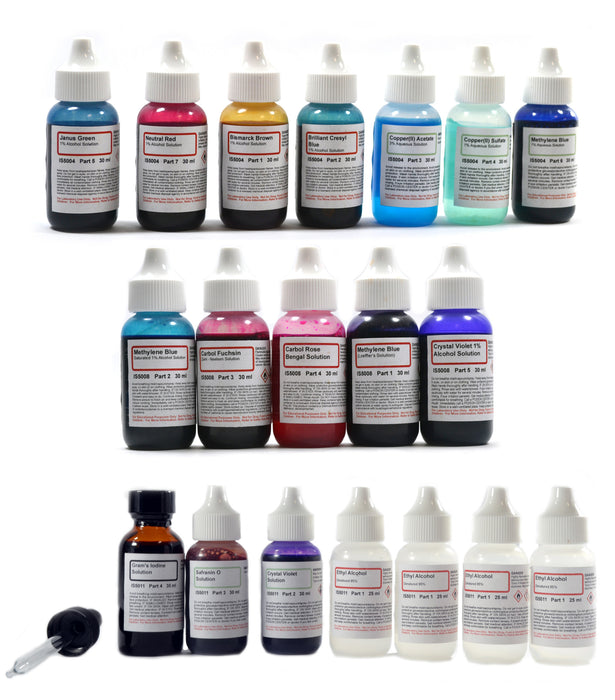 Innovating Science Complete Stain Kit - Vital Stain, Bacteria Stain, and Gram's Stain Chemicals Set - 19 Bottles in Total