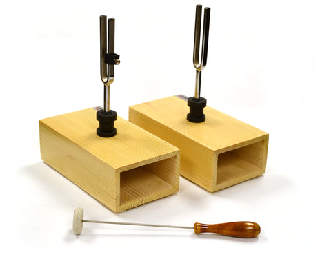 Eisco Labs Pair of Steel Tuning Forks (440Hz) in Wood Bases, One Adjustable