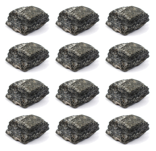 "12PK Raw Biotite Gneiss, Metamorphic Rock Specimens - Approx. 1"" - Geologist Selected & Hand Processed - Great for Science Classrooms - Class Pack - Eisco Labs"