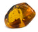 Amber Preserved Insect, 4-8g - Genuine Insect Specimen, 100% Authentic Chiapas Mexico Amber - The Artisan Mined Series by hBAR