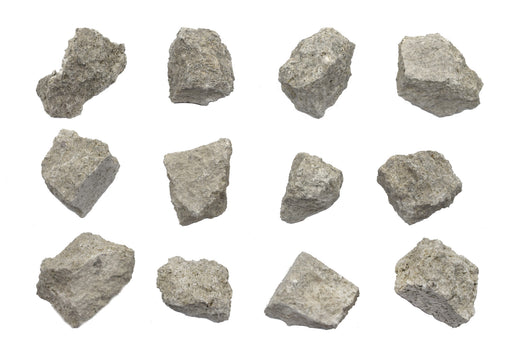 "12PK Raw Fossiliferous Limestone, Sedimentary Rock Specimens - Approx. 1"" - Geologist Selected & Hand Processed - Great for Science Classrooms - Class Pack - Eisco Labs"