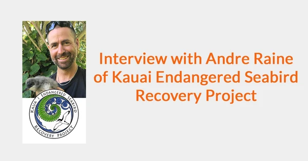 Interview with Andre Raine of Kauai Endangered Seabird Recovery Project