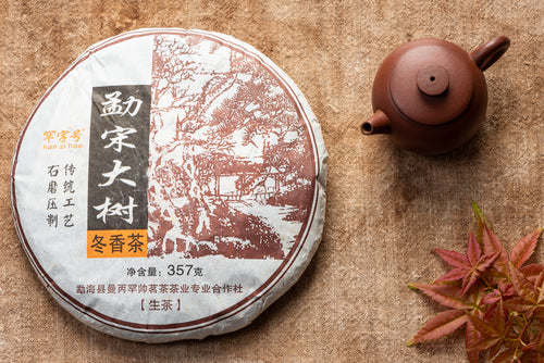 2014 Meng Song Winter | Aged Sheng PuErh Tea
