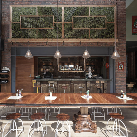 Grove beer and tap Liverpool restaurant interior with greenery and industrial lights