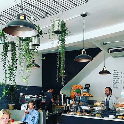 Coffee shop interior with vintage pendants and hanging plants