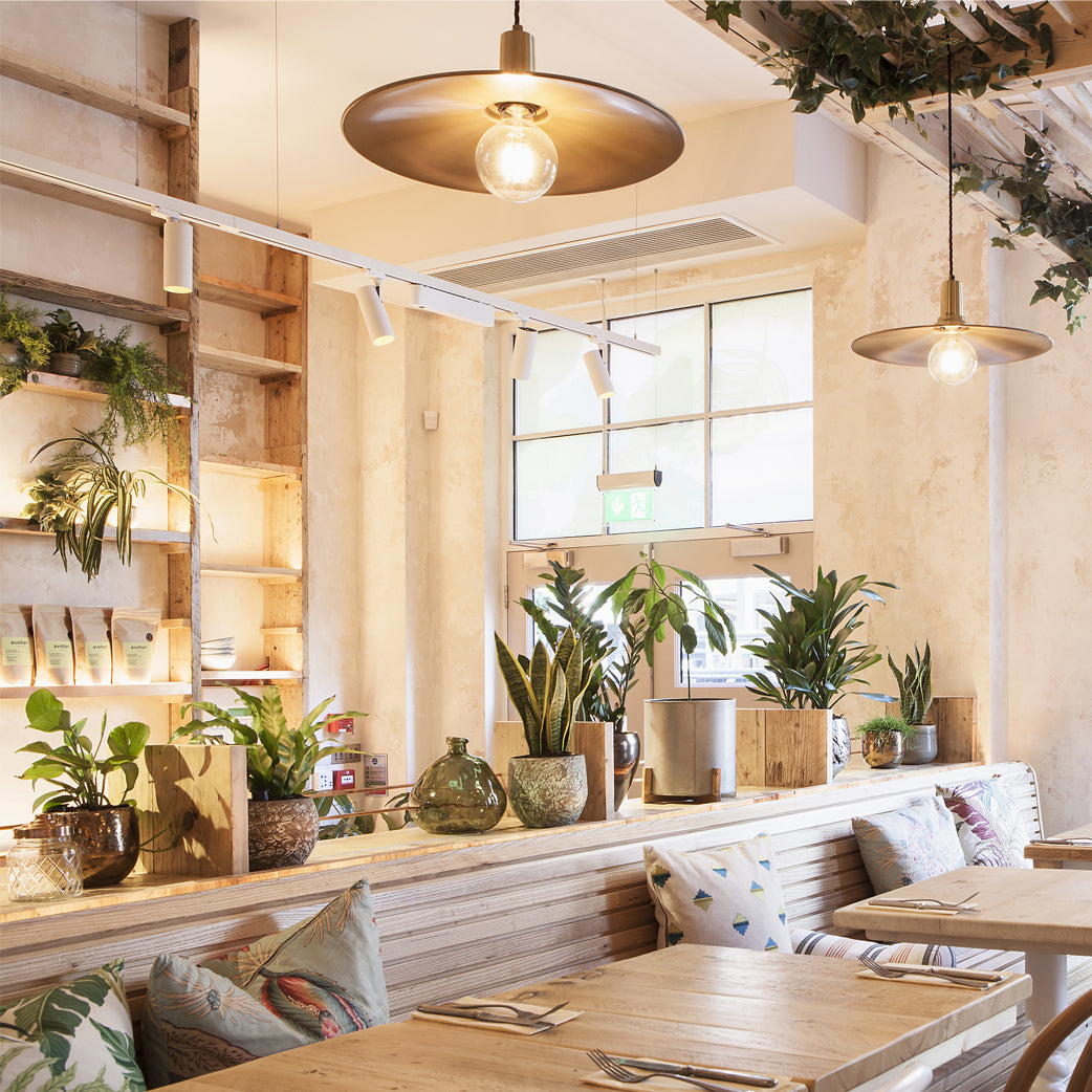 lighting design in a bright restaurant cafe with plants