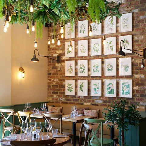 A restaurant with hanging plants and a feature wall