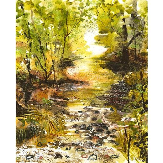 Sun gleaming on a bubbling brook