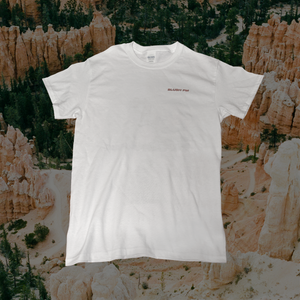 "Blush FM - T-Shirt - White ( + Digital Download of Single Track ""Move"")"