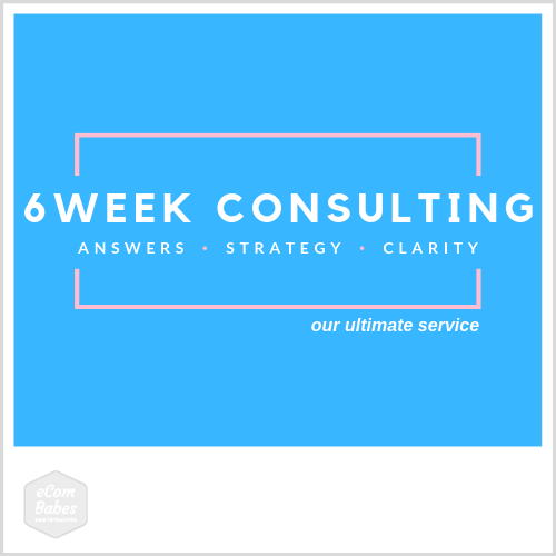 6 Week Done With You Consulting & eCommerce Strategy Development