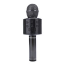 Microphone black.jpg