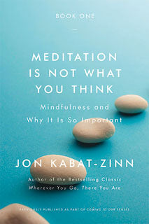 Book: Meditation Is Not What You Think