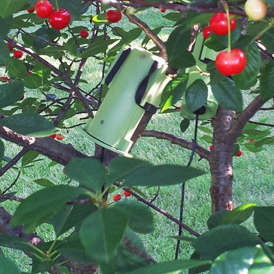 BugVibes™ - Electronic Plant Shield™- Cherry