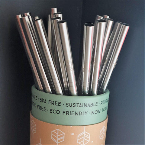 Ever Eco Stainless Steel Straw - Straight (each)