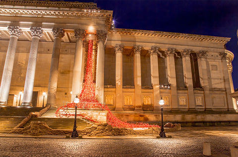 Poppies at St Georges Hall - Cascade