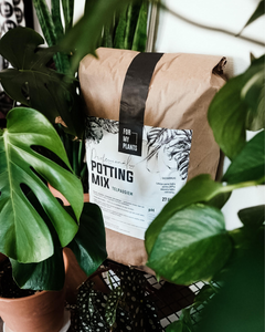 Potting Mix (27 liters)