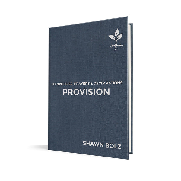 Provision: Prophesies, Prayers, & Declarations by Shawn Bolz