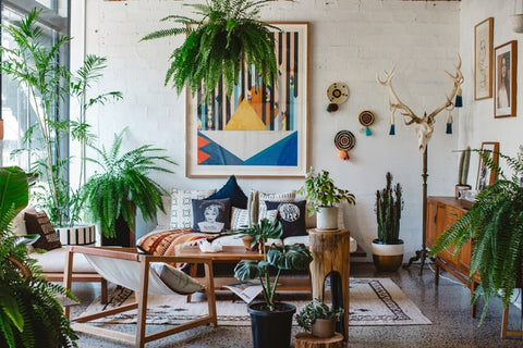 A bohemian living room with lots of plants, organic materials, mixed with older furniture, modern art, and some desert inspired decor