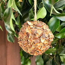 Load image into Gallery viewer, Dried Greenery Ornament | 5 Styles