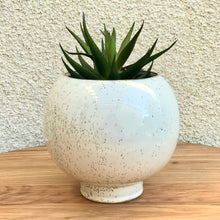 Load image into Gallery viewer, Rounded Plant Pot | 2 Sizes