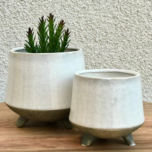 Load image into Gallery viewer, Footed Plant Pot | 2 Sizes