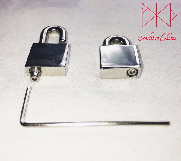 Stainless Steel Padlock showing the bottom view with the Allen key screw used for fastening it.