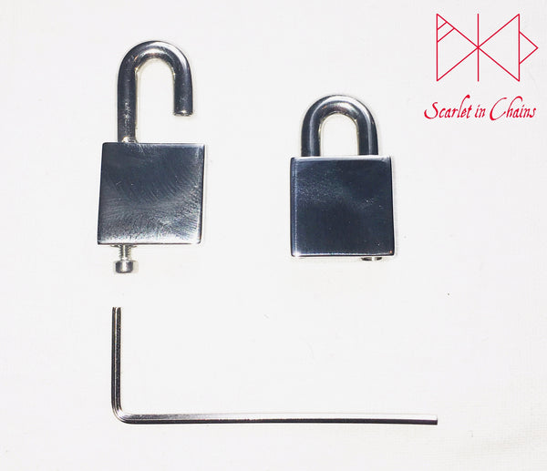 Stainless Steel padlock showing side view so you  can see how the screw is used to fasten the padlock.
