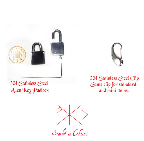choice between stainless steel allen key padlock and stainless steel clip