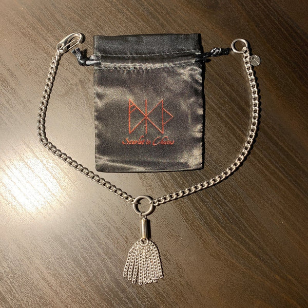 View of the 304 Stainless Steel Nine Tails Flogger Necklace with the bag it comes with