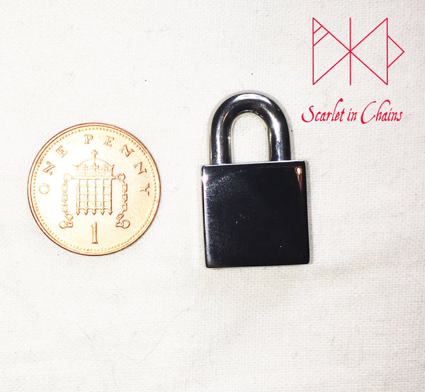 image of small stainless steel padlock with a penny for size reference