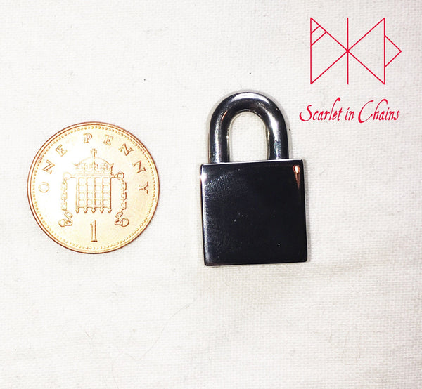 stainless steel padlock next to penny for size reference