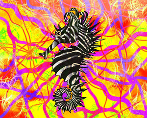 Seahorse Zebra Stripes Bold And Bright