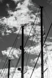 Boat yard masts