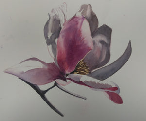 "Anne Hightower-Patterson, ""Japanese Magnolia"""
