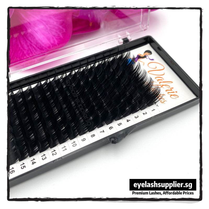 Camellia Eyelash Trays | 16 Rows (D-Curl 0.07) - Eyelash Supplier Singapore