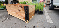 Mobile Patio Container Kit (Soil Included)