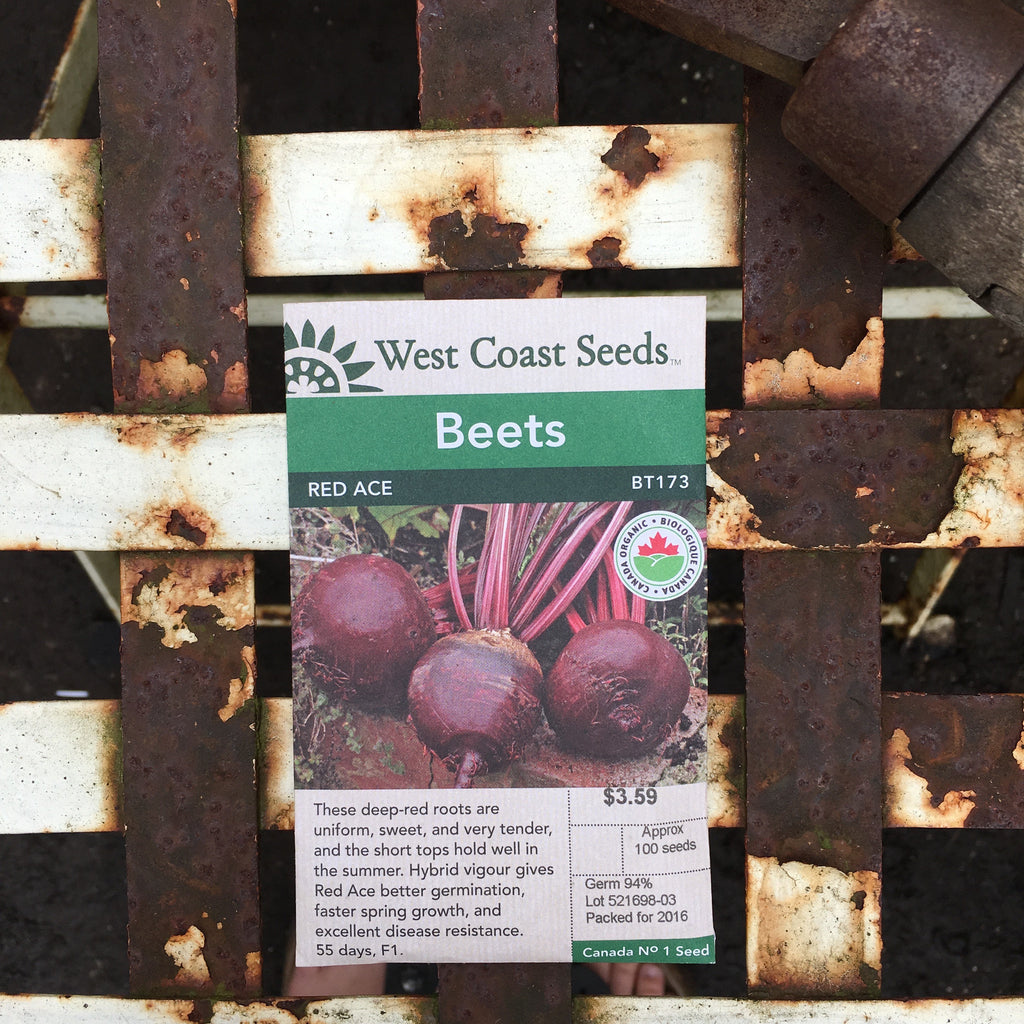 Beets - Red Ace Organic