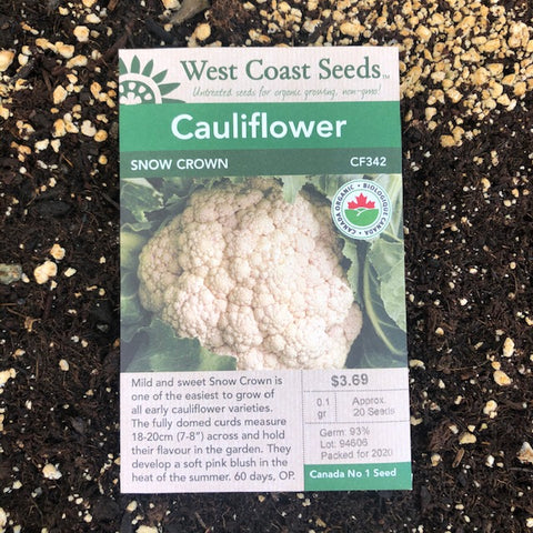 Cauliflower - Snow Crown