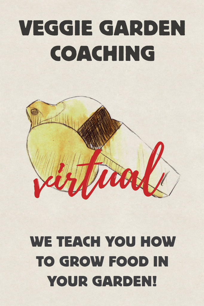 VIRTUAL 1 on 1 Garden Coaching